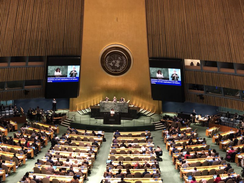 VOSAP attends COSP12 at United Nations